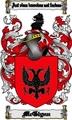 Thumbnail Mcglynn Family Crest  Mcglynn Coat of Arms Digital Download