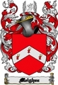 Thumbnail Meighen Family Crest  Meighen Coat of Arms Digital Download