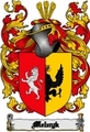 Thumbnail Melnyk Family Crest  Melnyk Coat of Arms Digital Download