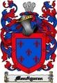 Thumbnail Mendiguren Family Crest  Mendiguren Coat of Arms Digital Download
