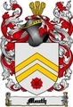 Thumbnail Meuth Family Crest  Meuth Coat of Arms Digital Download