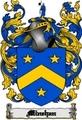 Thumbnail Minehan Family Crest  Minehan Coat of Arms Digital Download