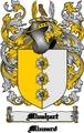 Thumbnail Minehart Family Crest  Minehart Coat of Arms Digital Download