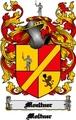 Thumbnail Moeltner Family Crest  Moeltner Coat of Arms Digital Download