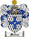 Thumbnail Molins Family Crest Molins Coat of Arms Digital Download