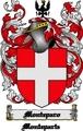 Thumbnail Monteparo Family Crest  Monteparo Coat of Arms Digital Download