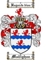 Thumbnail Mullighan Family Crest  Mullighan Coat of Arms