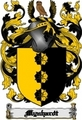 Thumbnail Mynhardt Family Crest  Mynhardt Coat of Arms Digital Download
