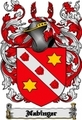 Thumbnail Nabinger Family Crest  Nabinger Coat of Arms Digital Download