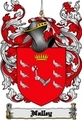 Thumbnail Nalley Family Crest  Nalley Coat of Arms Digital Download