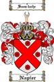 Thumbnail Napier Family Crest  Napier Coat of Arms Digital Download