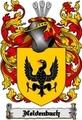 Thumbnail Neidenbach Family Crest  Neidenbach Coat of Arms Digital Download