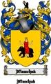 Thumbnail Niemchak Family Crest  Niemchak Coat of Arms Digital Download