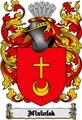 Thumbnail Niziolek Family Crest  Niziolek Coat of Arms Digital Download
