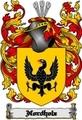 Thumbnail Nordholz Family Crest  Nordholz Coat of Arms Digital Download