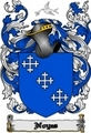 Thumbnail Noyes Family Crest  Noyes Coat of Arms Digital Download