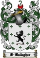 Thumbnail O-Gallagher Family Crest  O-Gallagher Coat of Arms Digital Download