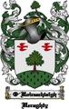 Thumbnail O-Hoireachtaigh Family Crest  O-Hoireachtaigh Coat of Arms Digital Download