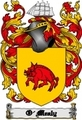 Thumbnail O-Mealy Family Crest  O-Mealy Coat of Arms Digital Download