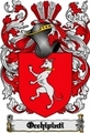Thumbnail Occhipinti Family Crest  Occhipinti Coat of Arms Digital Download