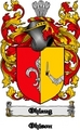 Thumbnail Ohlaug Family Crest  Ohlaug Coat of Arms Digital Download