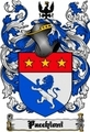 Thumbnail Pacchioni Family Crest  Pacchioni Coat of Arms Digital Download