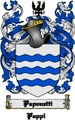 Thumbnail Paponetti Family Crest  Paponetti Coat of Arms Digital Download