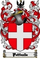 Thumbnail Pettinella Family Crest  Pettinella Coat of Arms Digital Download