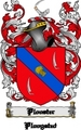 Thumbnail Plooster Family Crest  Plooster Coat of Arms Digital Download