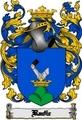 Thumbnail Radic Family Crest  Radic Coat of Arms Digital Download