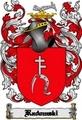 Thumbnail Radomski Family Crest  Radomski Coat of Arms Digital Download