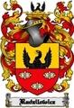 Thumbnail Radzilowicz Family Crest  Radzilowicz Coat of Arms Digital Download
