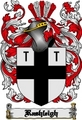 Thumbnail Rashleigh Family Crest  Rashleigh Coat of Arms Digital Download