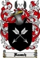 Thumbnail Rausch Family Crest  Rausch Coat of Arms Digital Download