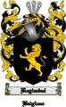 Thumbnail Regimbal Family Crest  Regimbal Coat of Arms Digital Download