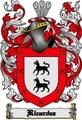 Thumbnail Ricardez Family Crest  Ricardez Coat of Arms Digital Download