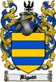 Thumbnail Rigatti Family Crest  Rigatti Coat of Arms Digital Download