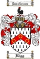 Thumbnail Rigg Family Crest  Rigg Coat of Arms