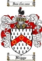 Thumbnail Rigge Family Crest  Rigge Coat of Arms