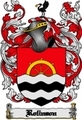 Thumbnail Rolinson Family Crest  Rolinson Coat of Arms Digital Download