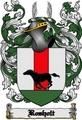 Thumbnail Rosholt Family Crest  Rosholt Coat of Arms Digital Download