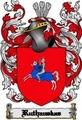 Thumbnail Ruthauskas Family Crest  Ruthauskas Coat of Arms Digital Download