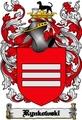 Thumbnail Rynkowski Family Crest  Rynkowski Coat of Arms Digital Download