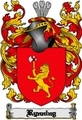 Thumbnail Rynning Family Crest  Rynning Coat of Arms Digital Download