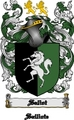 Thumbnail Saliot Family Crest  Saliot Coat of Arms Digital Download