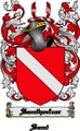 Thumbnail Sandhoefner Family Crest  Sandhoefner Coat of Arms Digital Download