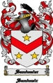 Thumbnail Sandmaier Family Crest  Sandmaier Coat of Arms Digital Download
