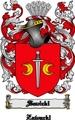 Thumbnail Savicki Family Crest  Savicki Coat of Arms Digital Download