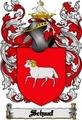 Thumbnail Schaaf Family Crest  Schaaf Coat of Arms Digital Download