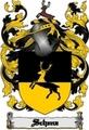 Thumbnail Schenz Family Crest  Schenz Coat of Arms Digital Download